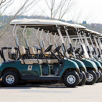 Low Speed EV/Golf cart/Cleaning car/RV